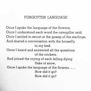 Forgotten Language poem